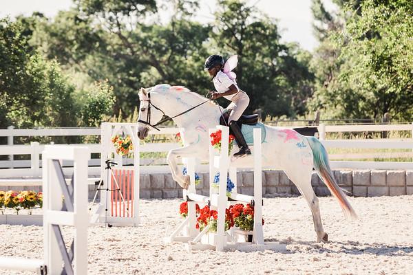 Equine Sportsfolio