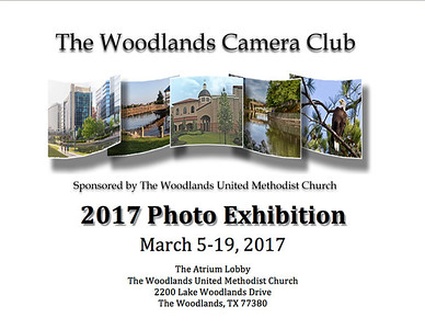 Member Photos from 2017 Exhibition