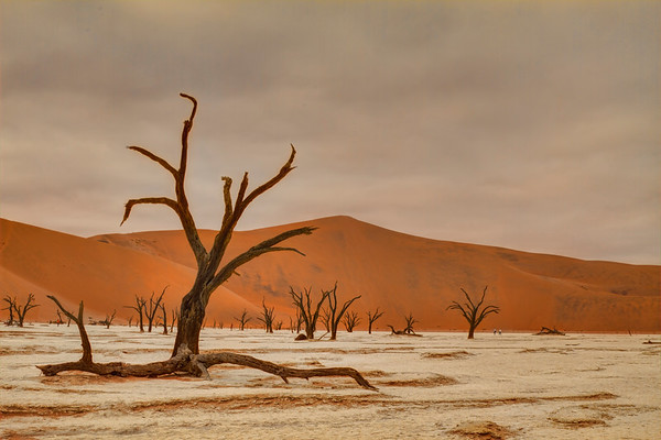Sossusvlei and Deadvlei, Namibia