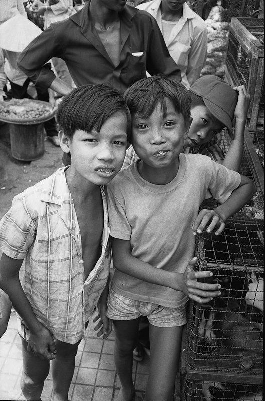 VN-chicken boys.jpg