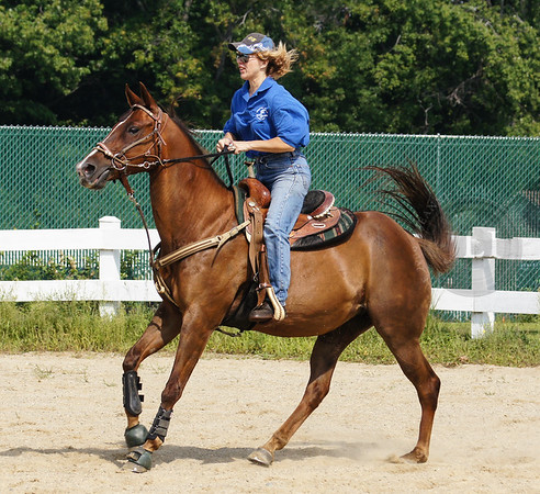 2012, August 25 - 2012 CGA Benefit Horse Show