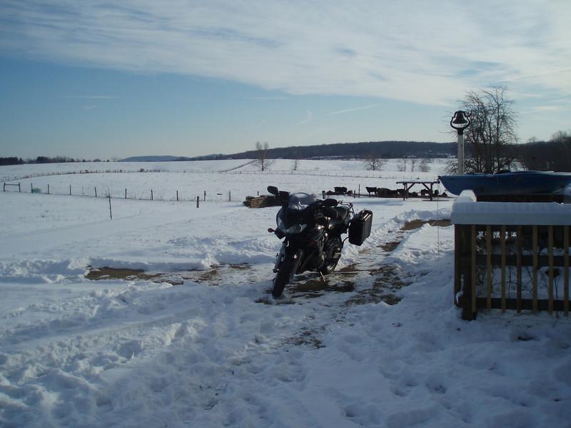 February 1, 2010: Bandit waits