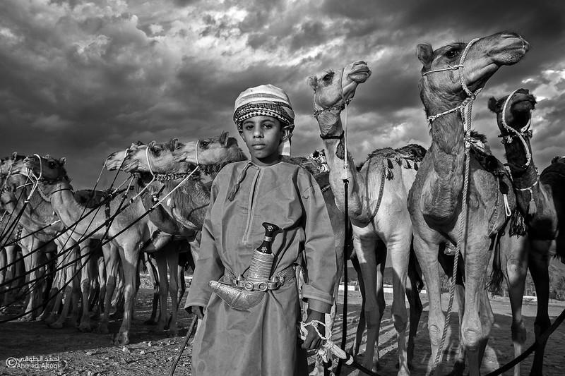 camels (9)bw- B&W.jpg