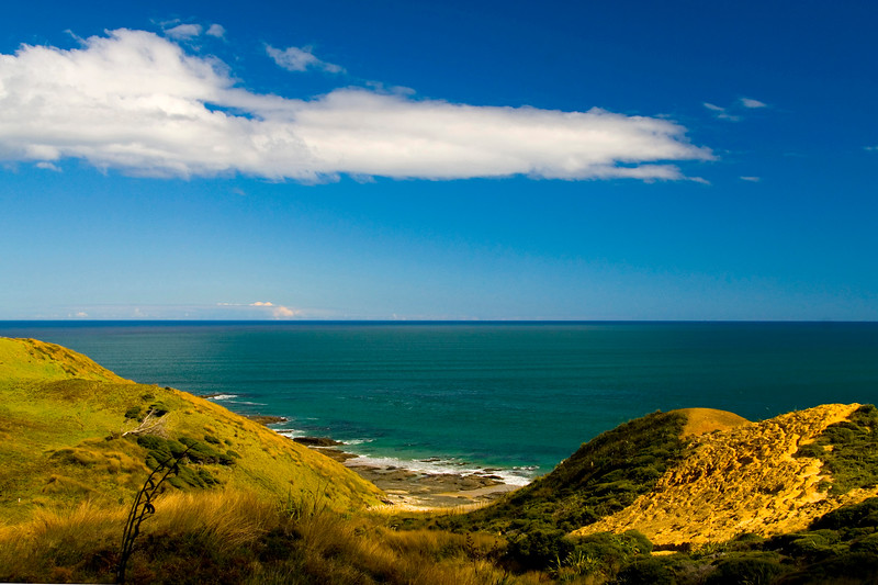 West Coast, Hokianga Heads, SH 16, Northland