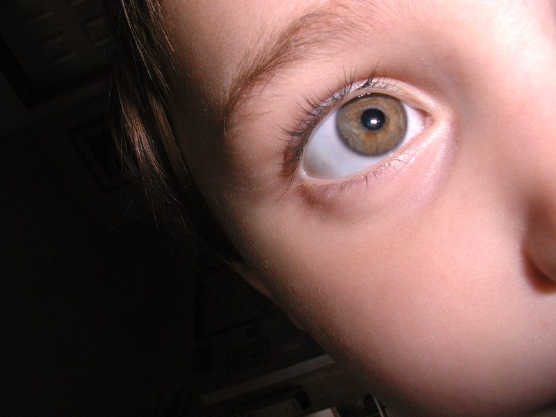 20020613-Kassidy Portrait Eye.jpg