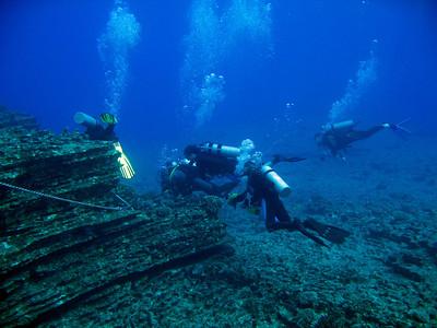 Ni Ihau off Kauai dive pictures