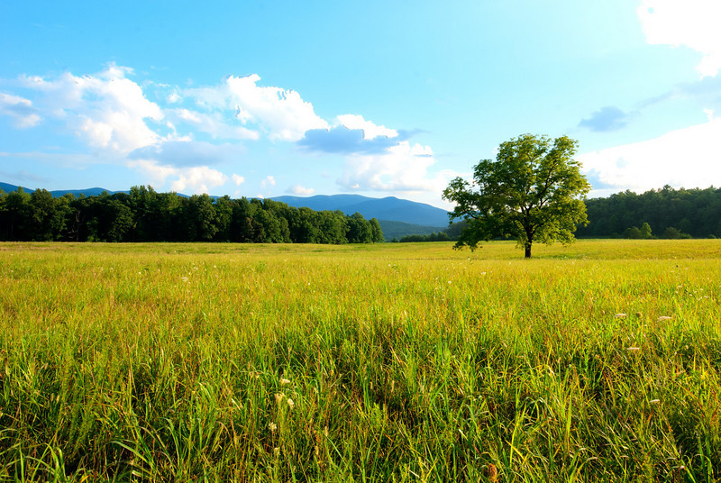 Smoky Mountains - Cades Cove