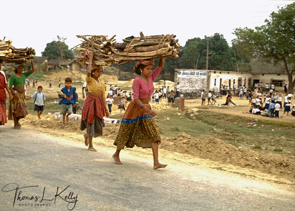 In Terai (plains) region of Nepal, Rich landlords hire Tharu girls, to collect woods and do other minor and major household chores. (Tharu are native to Terai region of Nepal.) Girl is discriminated and rendered to having fullfill all the household chores and not giving a chance to have formal education. Terai, Nepal.