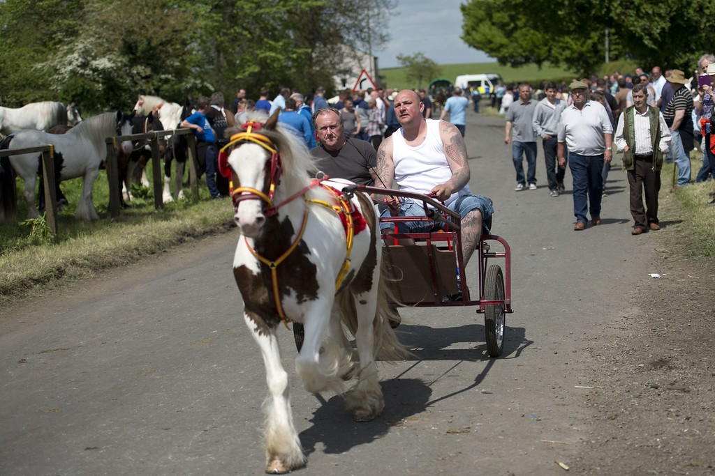 . People show off a horse on the opening day of the annual Appleby Horse Fair, in the town of Appleby-in-Westmorland, North West England on June 4, 2015. The annual event attracts thousands of travelers from across Britain to gather and buy and sell horses. AFP PHOTO / OLI SCARFF/AFP/Getty Images