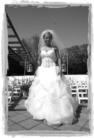 Kate & Brad's Bridal Party