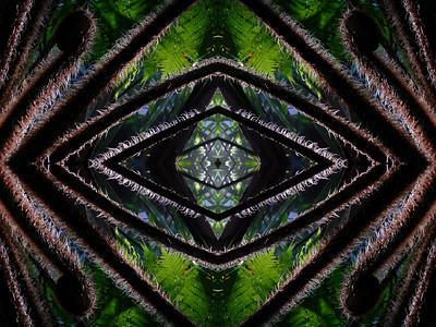 Fantasmagoria Arborea