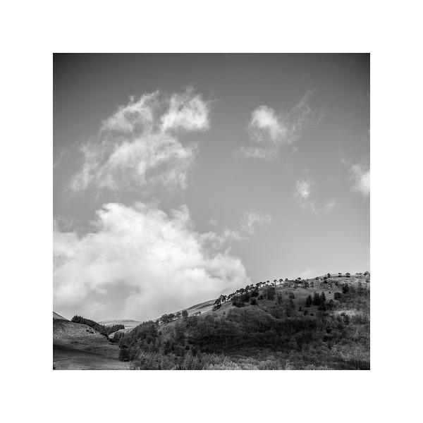102_Woodhill_10x10.jpg