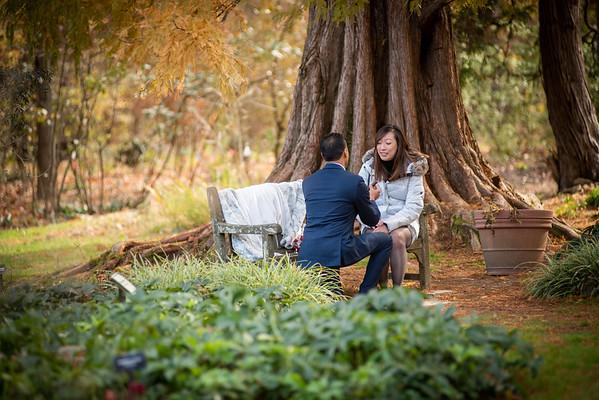 Rakesh Beautiful Surprise Proposal Baltimore