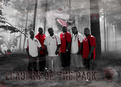 Wolfpack Graphics