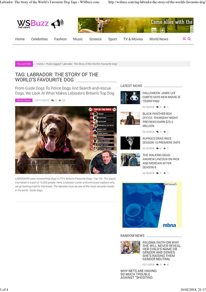 Labrador: The Story of the Worldâ•Žs Favourite Dog Tags - WSBuzz.com