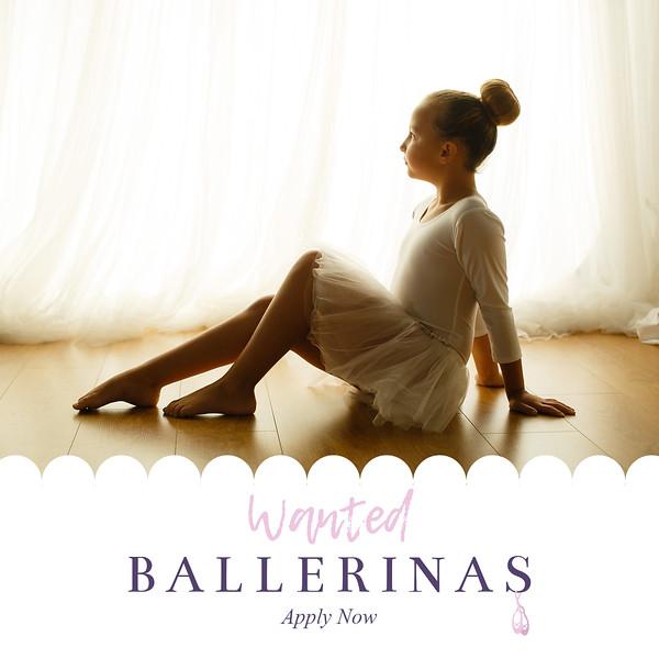 Wanted Ballerina 3.jpg
