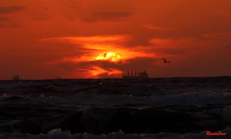 Sunrise Port A Rockport 11-18-15 206.jpg