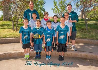 6. Eagles