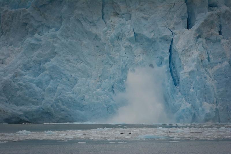 Kenai-Fjords-107.jpg