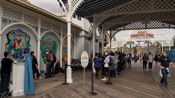 Disneyland Resort, Disney California Adventure, Paradise Pier, Paradise, Pier, Cove Bar, Cove, Bar