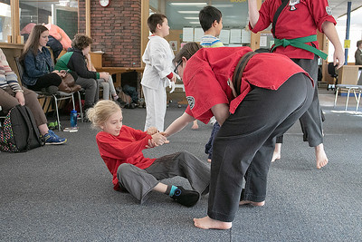 Karate at Fitchburg Public Library, Feb. 20, 2020