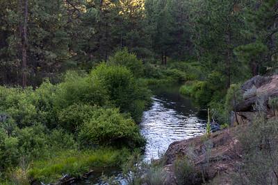 Meadow Picnic area hike