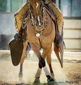 Cowboy Dressage Shows - 2014 and Before