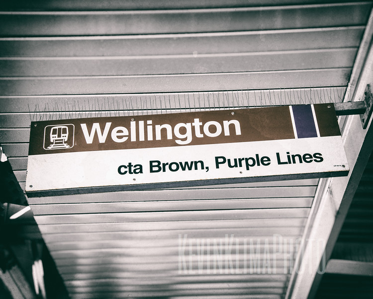Wellington - CTA Brown, Purple Lines