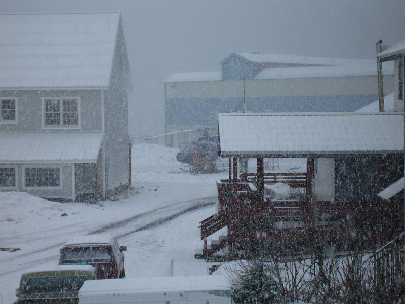 Alaska 2008 067.jpg
