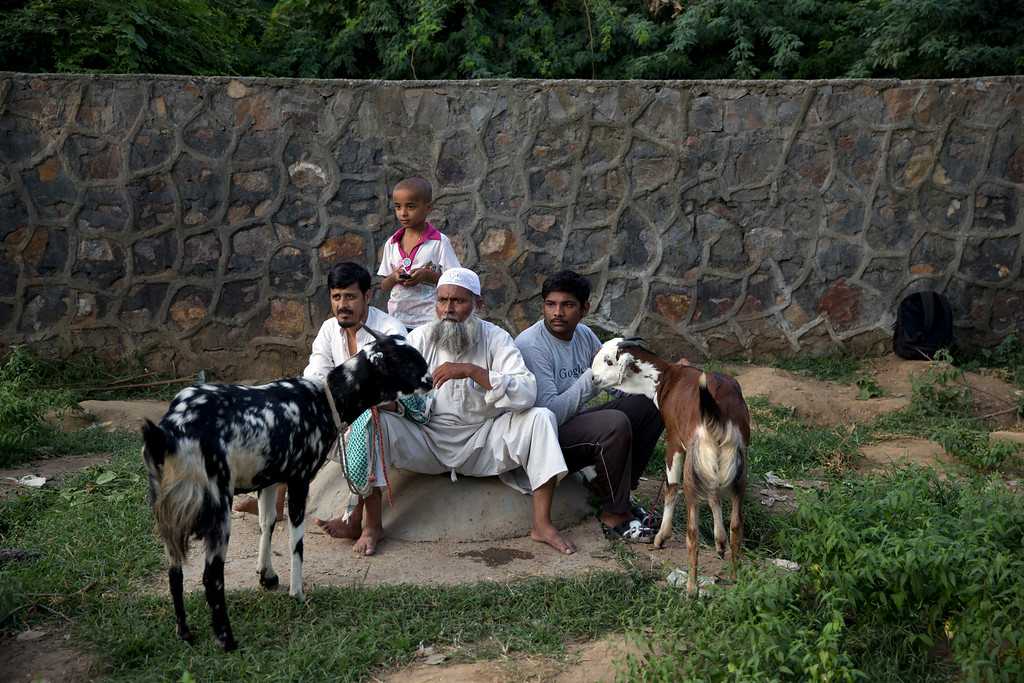 """. Indian men await customers with their goats ahead of Eid al-Adha, in New Delhi, India, Monday, Sept. 12, 2016. Muslims worldwide are celebrating Eid al-Adha, or \""""Feast of Sacrifice,\"""" the most important Islamic holiday that commemorates the willingness of the Prophet Ibrahim to sacrifice his son before God stayed his hand. During the holiday, Muslims slaughter livestock, distributing part of the meat to the poor. (AP Photo/Tsering Topgyal)"""