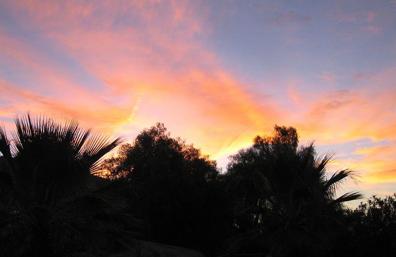Dawn, 15 Oct 2005