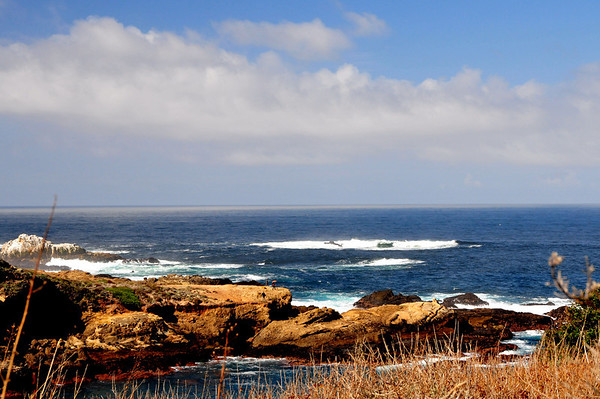 Point Lobos - Carmel Calif.