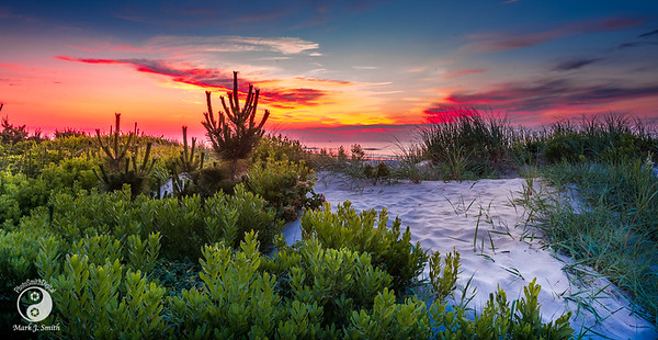 Sea Isle City Sunrise