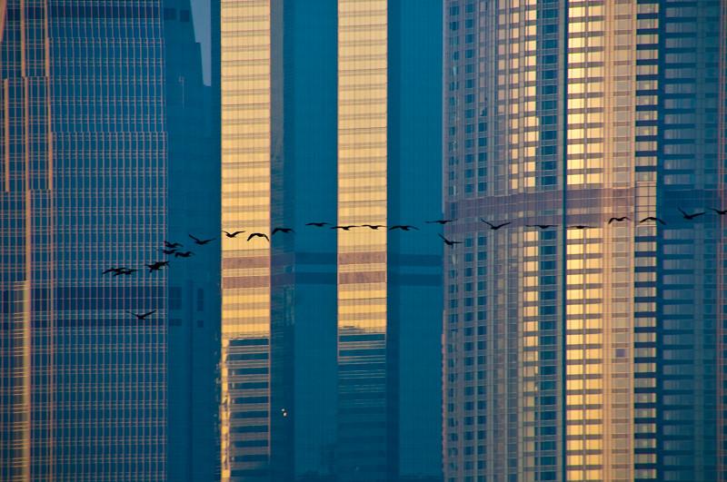 HongKong05-Edit.jpg