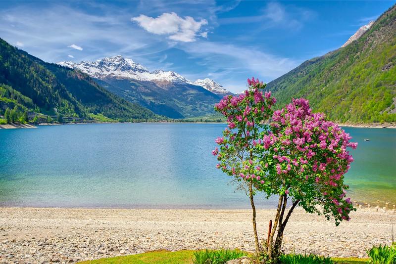 Lucky Landscape from train in Switzerland