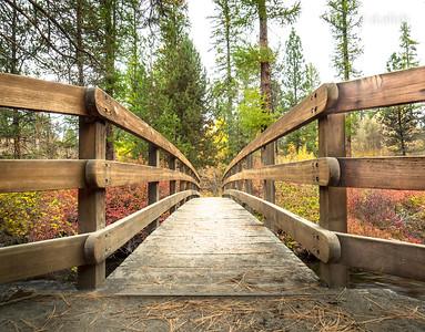 Cascadia (Spring & Fall)