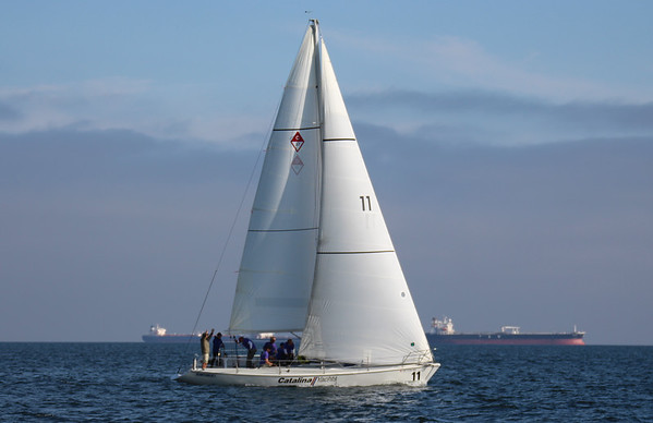 Catalina 37's