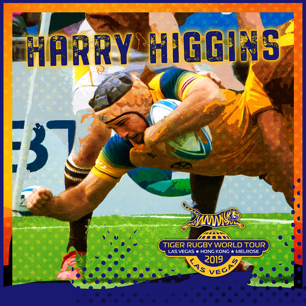 harry higgins tiger.jpg