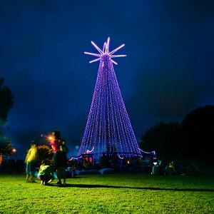 Ponsonby Christmas Lights