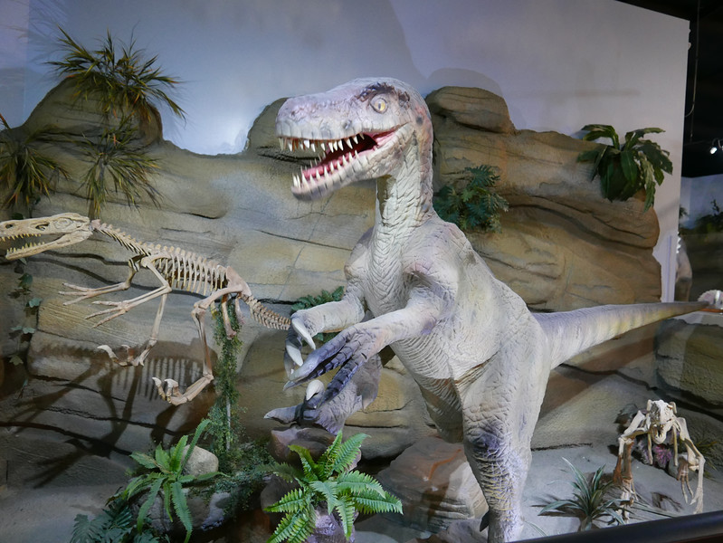Animatronic Dinosaurs at Fossil World