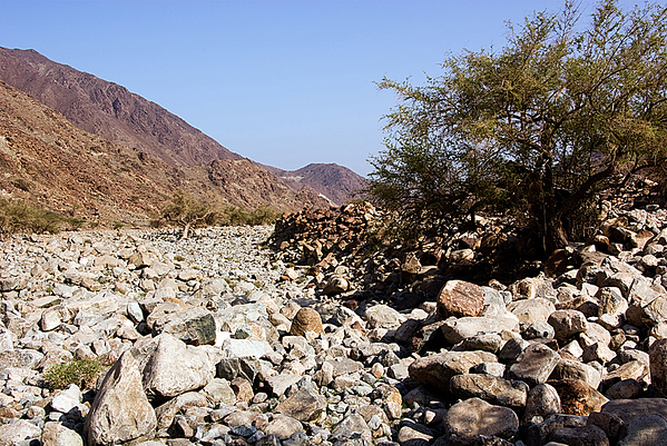 Wadi Mai to Ain Al Ghamour (63 Photographs)