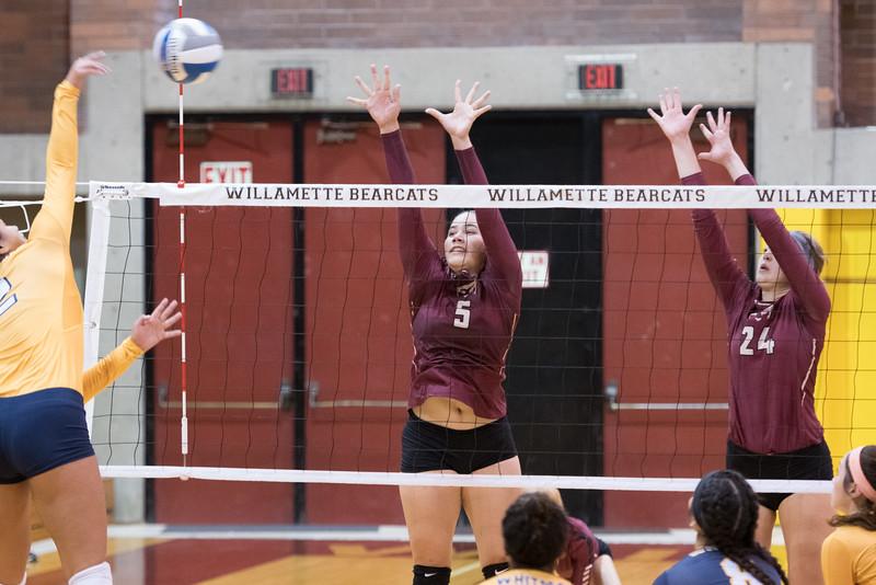 Willamette Bearcats vs Whitman