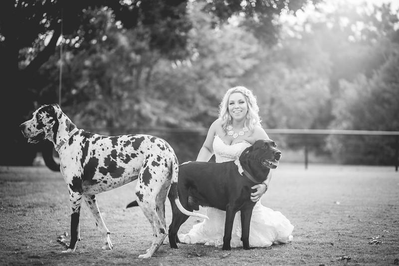 2014 09 14 Waddle Wedding - Bride and Groom-903.jpg
