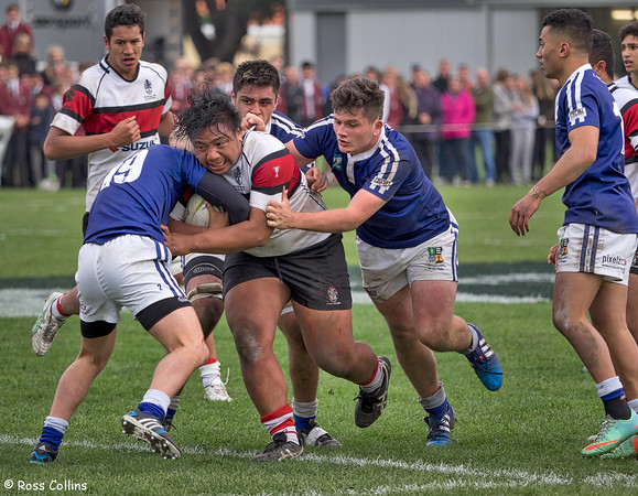 Scots College 37 vs. St Pats Town 32 2015