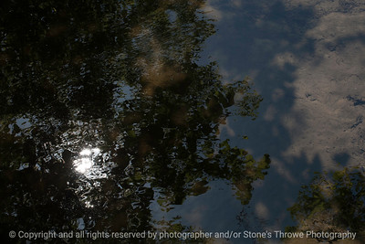 reflections-wdsm-13may15-18x12-003-3306