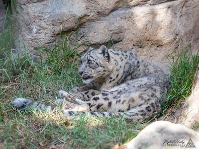 Santa Barbara Zoo - 10-13-2018