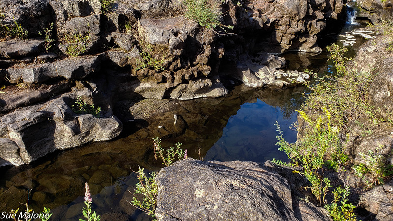 08-18-2020 Rogue River Gorge-5.jpg