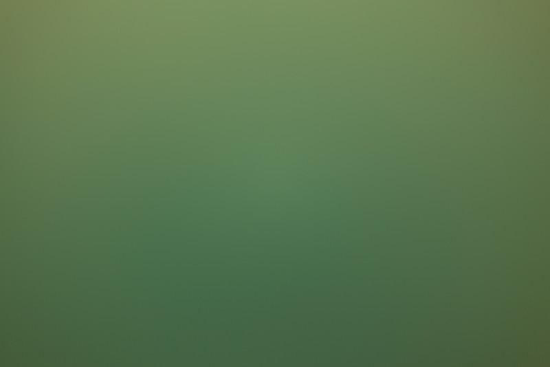 Colour Washes BH5A7072.jpg