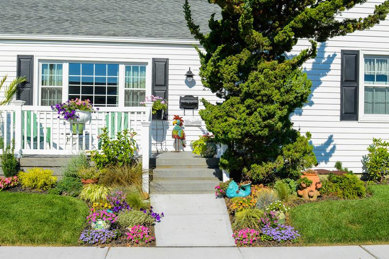 House and Garden-005.jpg