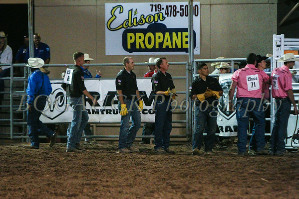 Wild Cow Milking PPOB 2014